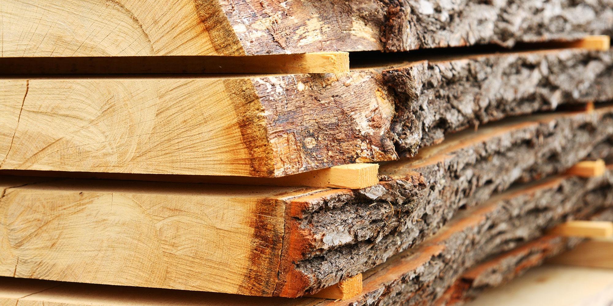 intro legno urbano