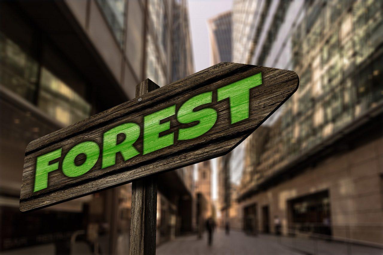 La certificazione del legno urbano secondo PEFC