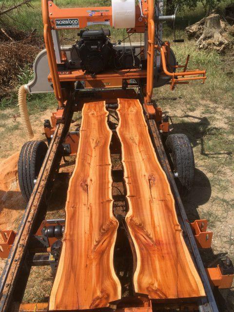tavole di legno urbano